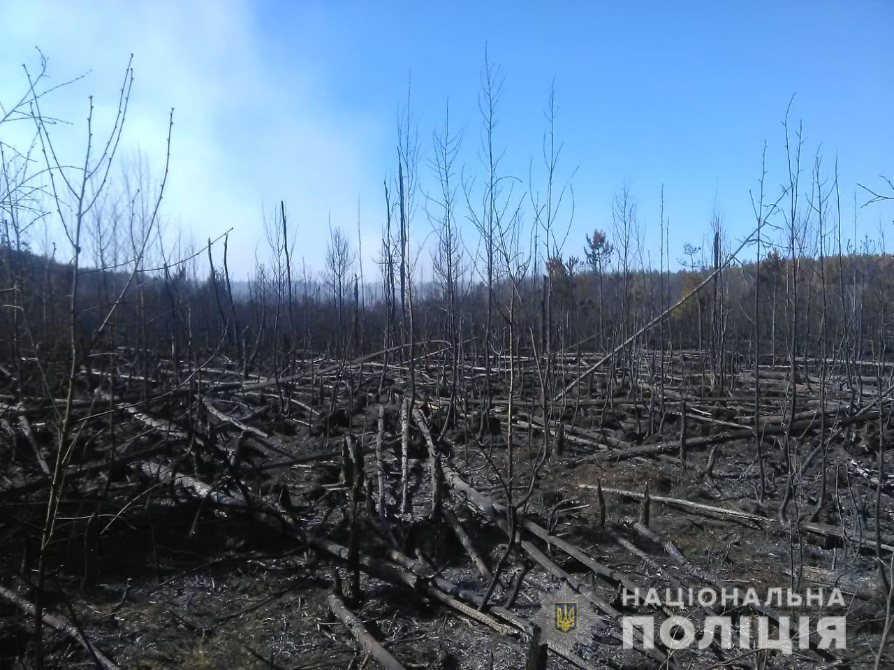 Полиция открыла дело из-за пожара в Чернобыльской зоне