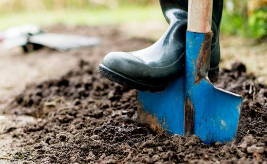 Мэр Днепра приказал выкопать 600 могил для жертв коронавируса