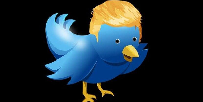 Трамп-младший попросил Маска создать новую соцсеть для своего отца