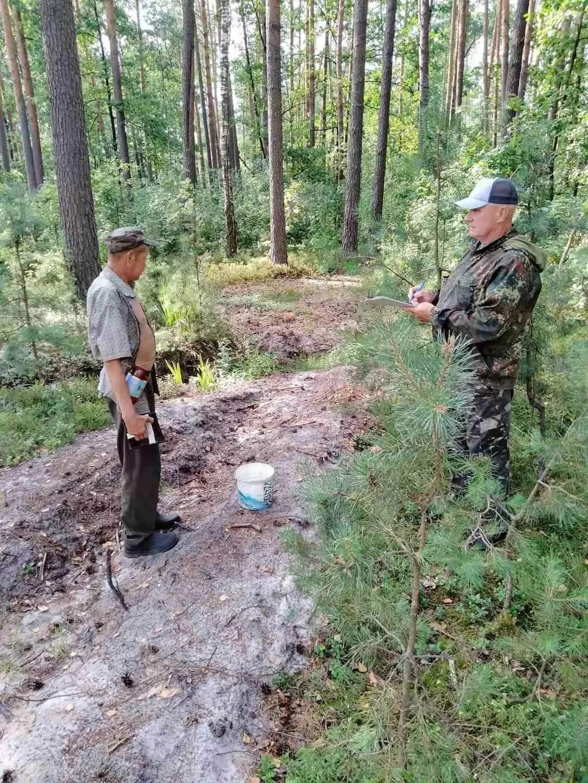 Украинцев штрафуют за сбор ягод в лесу и посылают за специальным разрешением