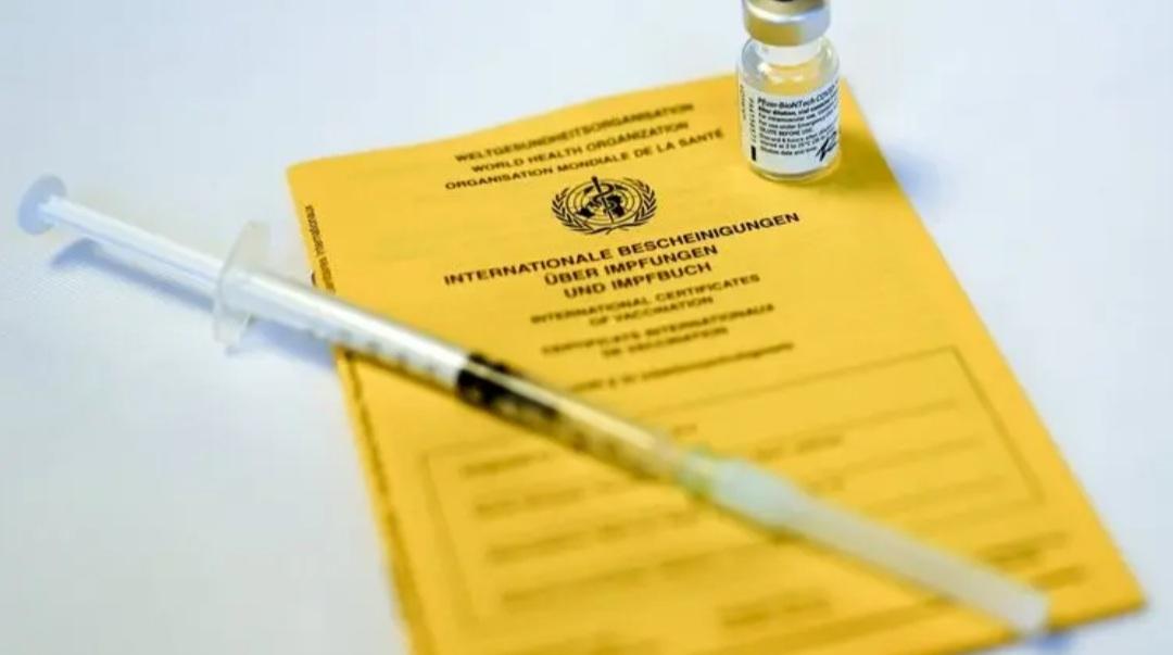 """Корочка вместо укола. Как """"Страна"""" покупала сертификат вакцинации на подпольном рынке"""